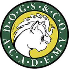 Dogs & Co. Academy A.S.D.